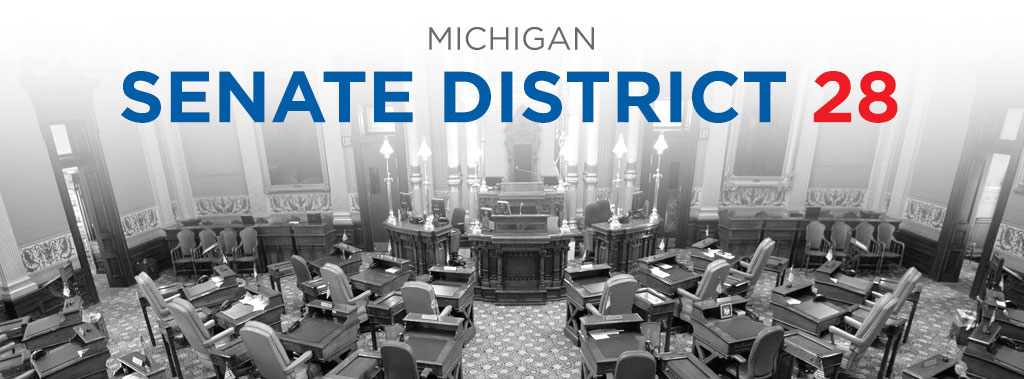 Michigan Senate District 28